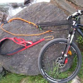 Bikejoring pack Completo