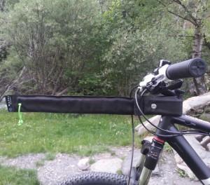 Bikejoring Arm