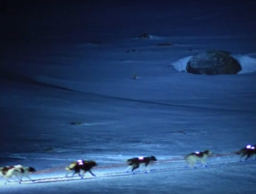 Mushing nocturno  Andorra Mushing paseo nocturno 2 km Mushing night 500x380