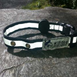 Collar Perro – Led Collar Perro Collar Perro – Led collar 268x268