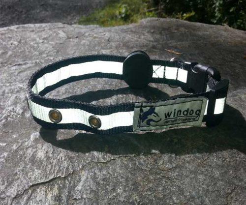 Collar Perro Collar Perro – Led collar 500x417