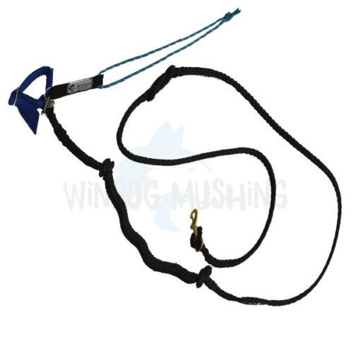 Linea Bikejoring + Belt Negro