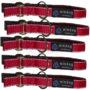 Pack-collar-reflectante-rojo