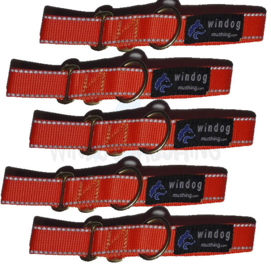 Pack Collar reflectante