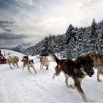 Mushing-Andorra-niños  Mushing con niños – Paseo 1.5 km Infantil Mushing Andorra ni  os 150x150