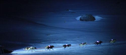 Mushing nocturno  Andorra Mushing, paseo nocturno 4 km Mushing night 500x221