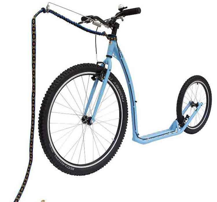 Patinete-Bikejoring