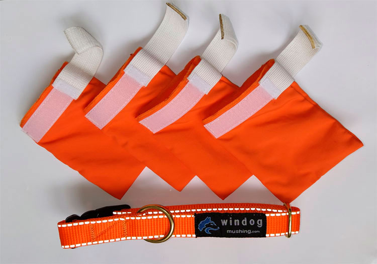 Pack Collar + botas para perro